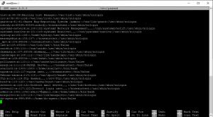 ubuntu user default shell
